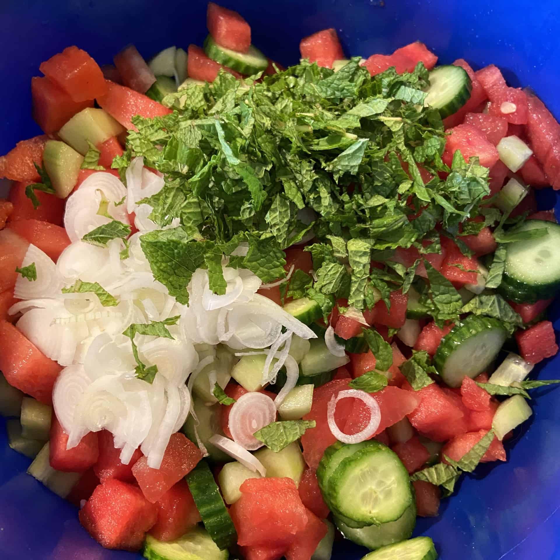 Wassermelone mit Minze